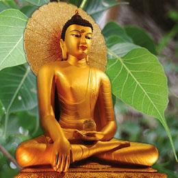 Spiritual and religious tours to India